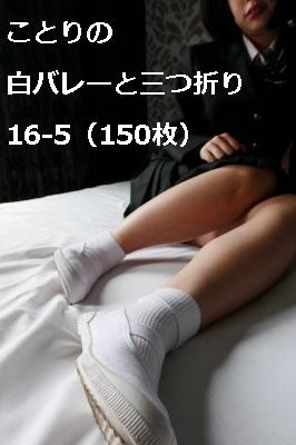 ことりの白バレーと三つ折り16-5(150枚)