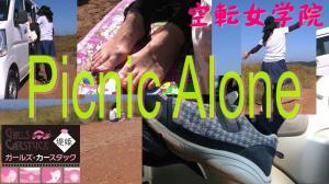 Picnic Alone