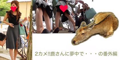 2カメ!!鹿さんに夢中で、、の番外編