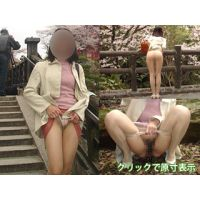 パンスト露出&野外放尿vol.3〜お花見〜