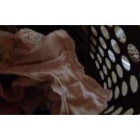 『身内観察・・〜再び〜』・・洗濯籠2