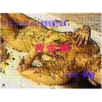 ロリ・スカトロ・変態短編小説集「黄金娘」