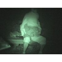 リボルバーさんの投稿「深夜のお散歩その3」