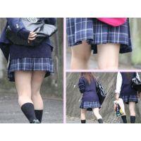 ★街撮り Vol.5★ 「JK達のチラリズム編パート3」