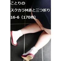 ことりのスクカラM赤と三つ折り16-6(170枚)