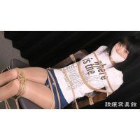 緊縛体験 - 繭麗(まゆら) - 椅子緊縛