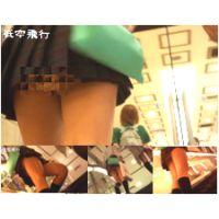 【フルHD動画】低空飛行vol.30