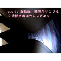 �2週間密着逆さ撮り&スカートめくり動画!【大容量413MB!】弐