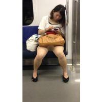 電車内の生脚をさらけだす真面目そうな大人のお姉さん(後編)