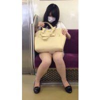 今期No.1の傑作誕生!電車内のミニスカから白パ○ツ丸見えの可愛すぎるお姉さんを対面撮影(其の四)