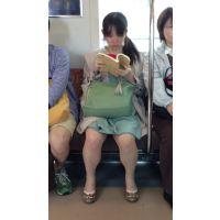 電車内の生脚ロリ娘(前編)