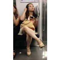 電車内のつるつる美脚の不機嫌そうな美人お姉さん(前編)