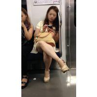 電車内のつるつる美脚の不機嫌そうな美人お姉さん(後編)