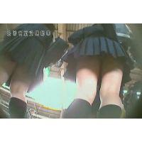 【逆さ撮り】JKギャル集団のスカートの中【駅構内】<iPhoneスマホ対応>