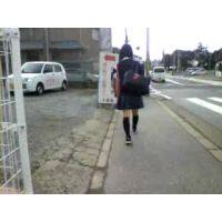 制服ハイソックス学校帰りの女の子【ストーキング動画】街撮り編 318