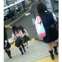 階段をおりる女子校生バス停に向かう女子校生【ストーキング動画】街撮り編 5作品セット販売 102〜107