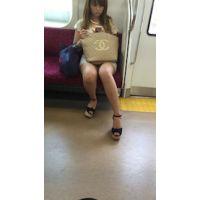 【電車内対面動画】キレイなお姉さんの三角地帯がばっちり見れます
