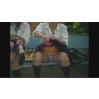 ひと夏のパンツ(動画)