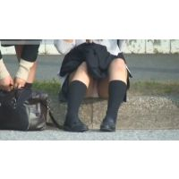 ハミマンNO,2(動画)