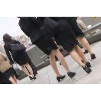 街角をベージュパンストで染め上げたリクルートスーツ女子大生集団