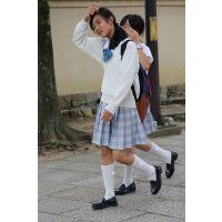 制服女子校生達の修学旅行風景 File042