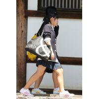 制服女子校生達の修学旅行風景 File026