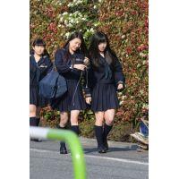 制服JK通学風景 File222
