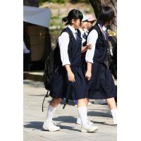 制服女子校生達の修学旅行風景 File022