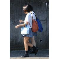 制服JK通学風景 File165