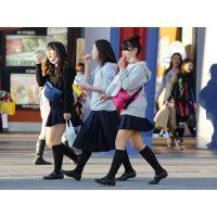 制服女子校生達の放課後風景 File026