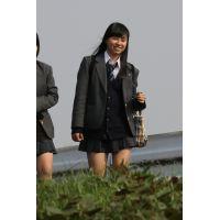制服JK通学風景 File212