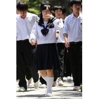 制服女子校生達の修学旅行風景 File031