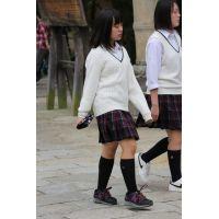 制服女子校生達の修学旅行風景 File038