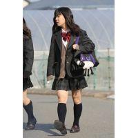 制服JK通学風景 File218
