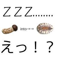 わっ!  起きちゃった!!  逃っげろ〜〜〜〜!!!!!!!