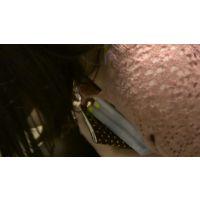 【フルHD】リアル胸チラハンターvol.55