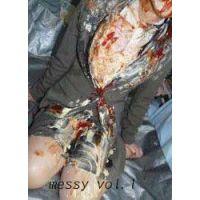 messy vol.1 4/6