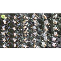 【超高画質フルHD動画】速報!名古屋オートトレンド2017 名古屋の娘を真っ逆さま撮りNO-123セット商品