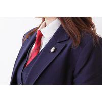 高校 学校制服 高画質 無料サンプル(名女 旭丘 純心)