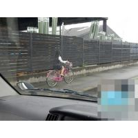 自転車通勤なOL 6