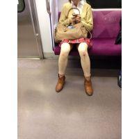 電車で向かいのお姉さんを。。。 超合金パンチラ vol.1