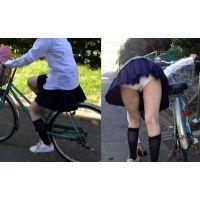 自転車で帰宅中の女の子につきまとい パンチラサミット大辞典 vol.1
