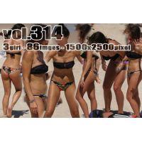 vol314-美乳ビキニブラに食い込みブラジリアンパンティの美尻