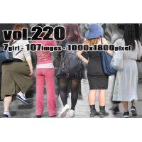 vol220-透けPラインとランガード魅力のパンティヒップ
