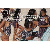 vol317-スイムウェア姿の豊満巨乳エキゾチックギャル(画像&動画)