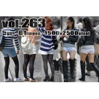 vol263-ショーパン食い込み美尻ヒップライン