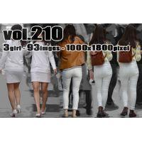 vol210-魅力あふれるP透け&Pライン