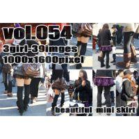 vol54-ヒラミニの魅力