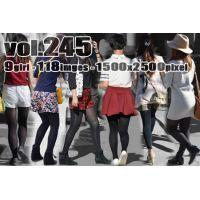 vol245-むっちり美脚の黒タイツ