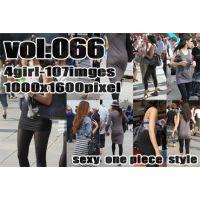 vol66-ワンピースの魅力